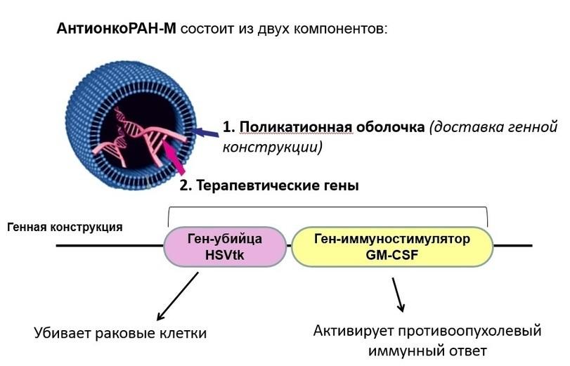 Инвестиционные проекты России
